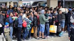 Francja - kraj imigranckiego bezprawia. 2 tys. napadów dziennie!!! - miniaturka