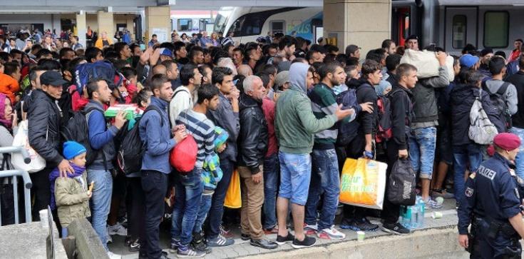 Francja - kraj imigranckiego bezprawia. 2 tys. napadów dziennie!!! - zdjęcie
