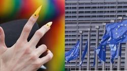 Radykalne postulaty ruchu LGBT w unijnej Strategii  - miniaturka