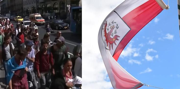 Austria: Imigranci brutalnie zamordowali 13-latkę - zdjęcie