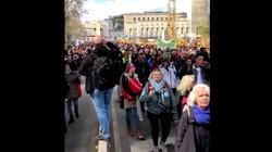[Wideo] Niemcy. Tysiące koronasceptyków wyszło na ulice Stuttgartu - miniaturka