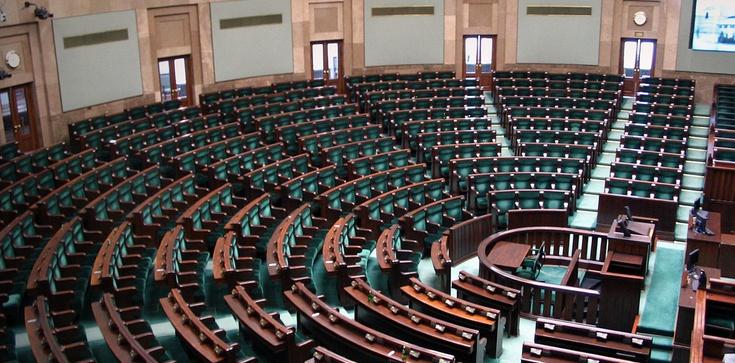 Sejm zagłosował. PSL bez wicemarszałka - zdjęcie