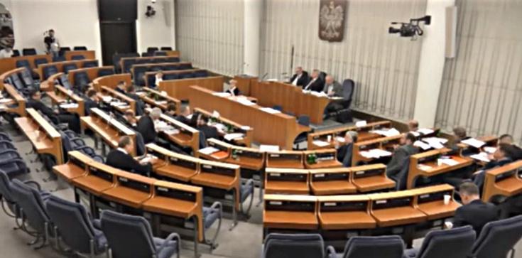 Senat: Piątka dla zwierząt wątpliwa konstytucyjnie  - zdjęcie