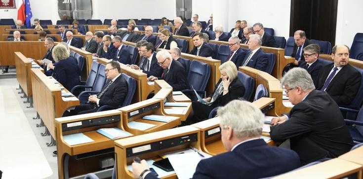 Jerzy Bukowski: Dobra zmiana - polonijni senatorowie - zdjęcie