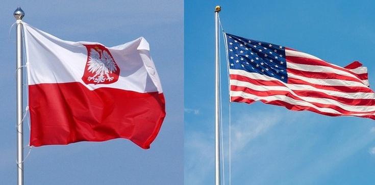 Skandaliczne oświadczenie amerykańskiej dyplomacji! ,,Wzywamy Polskę, by nie posuwała ustawy do przodu'' - zdjęcie