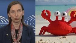 Kraby i homary maja głos w PE - miniaturka