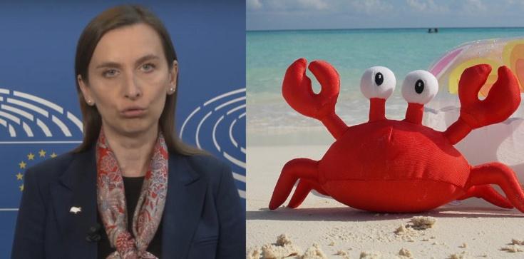Kraby i homary maja głos w PE - zdjęcie