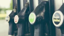 Ceny paliw w dół! Sprawdź, gdzie będzie najtaniej - miniaturka