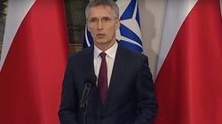 Będzie narada NATO ws. Aleksieja Nawalnego - miniaturka
