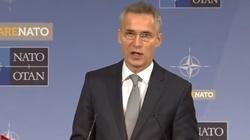 Stoltenberg: Drzwi NATO pozostają otwarte dla Gruzji - miniaturka