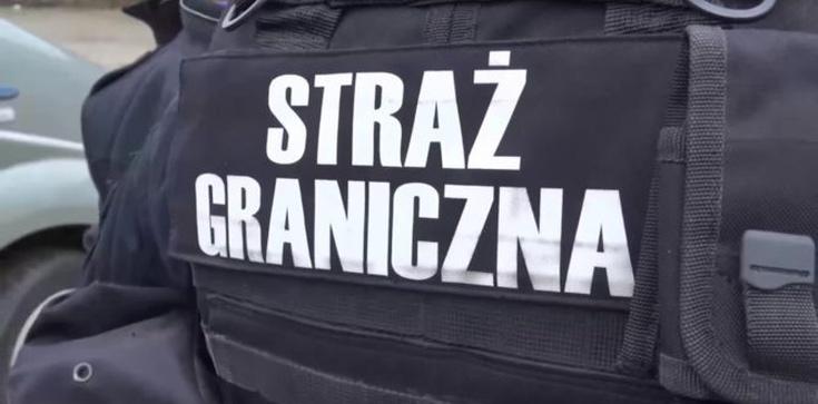 Uchodźcy wtargnęli do Polski. Ukrywali się pod podwoziem autokaru - zdjęcie