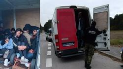 Wojna hybrydowa: SG zatrzymała Ukraińca. Próbował przemycić 27 nielegalnych imigrantów z Iraku - miniaturka