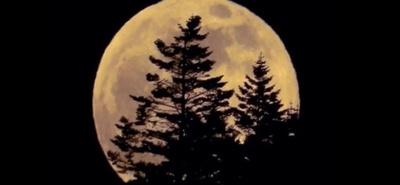 Dzisiejsza Ewangelia: ukażą się wielkie znaki na niebie - i mamy superpełnię księżyca!