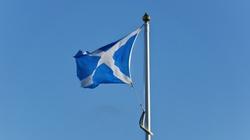 Premier Szkocji chce nowego referendum ws. niepodległości - miniaturka