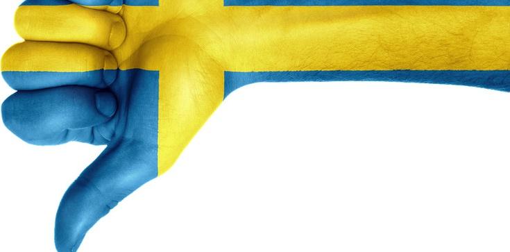 'Szwedzi są tak naiwni, że powinni być ubezwłasnowolnieni'. Polka opowiada o swojej gehennie - zdjęcie