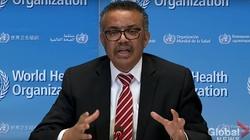 WHO zabiera głos ws. dystrybucji szczepionek: To moralna katastrofa - miniaturka