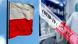 Brawo Polska! Krajowy prototyp testu gotowy - miniaturka