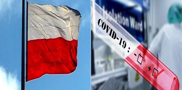 Brawo Polska! Krajowy prototyp testu gotowy - zdjęcie
