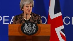 'Zostaniemy z niczym!' Theresa May przestrzega przed odrzuceniem umowy brexitowej - miniaturka