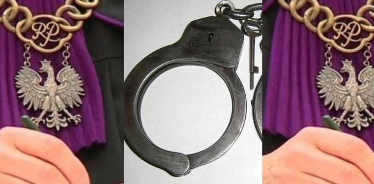 Kasta basta: Sędzia i jego żona skazani za kradzież sprzętu elektronicznego - zdjęcie