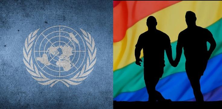 Anna Kubacka o pozornych działaniach ONZ: Wzmocnienie ,,myślenia feministycznego'' i propagowanie ideologii gender - zdjęcie