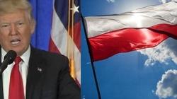 Trump może znieść wizy dla Polaków  - miniaturka