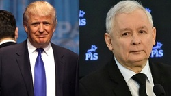 USA i Polska - konserwatywne demokracje - miniaturka