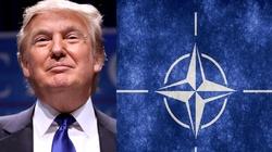Dyskusja w Niemczech: Dokąd zmierza NATO? - miniaturka