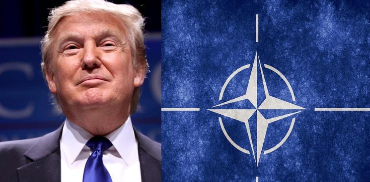 Polska jest lepsza dla armii USA! Tadeusz Dziuba dla Frondy - zdjęcie