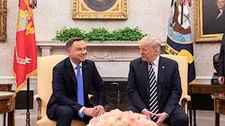 'PiS pozwoli mu się wykorzystać'. Politycy PO-KO skandalicznie o wizycie Trumpa w Polsce - miniaturka
