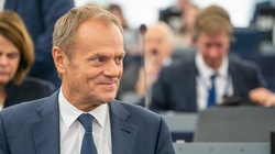 Sondaż. Jak Donald Tusk dba o polskie interesy w Unii Europejskiej? - miniaturka