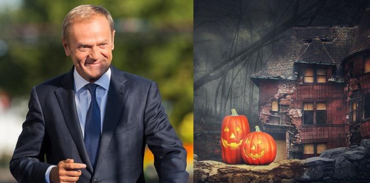 Tusk i projekt ustawy o ,,Halloween'' anonimowego obywatela - zdjęcie