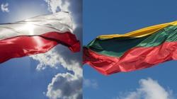 Prezydent Litwy: Niech nasze ojczyzny zawsze będą wzorem dla innych narodów - miniaturka