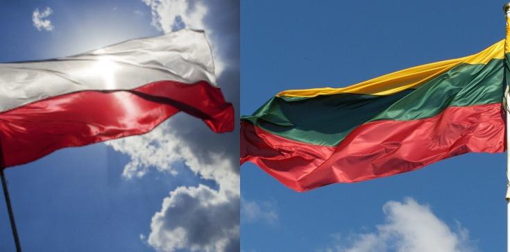 Prezydent Litwy: Niech nasze ojczyzny zawsze będą wzorem dla innych narodów - zdjęcie