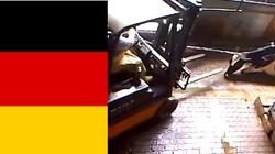 Zwyrodnialcy z Niemiec katują krowy w ubojniach. Nie mają sobie równych! A świat milczy - miniaturka