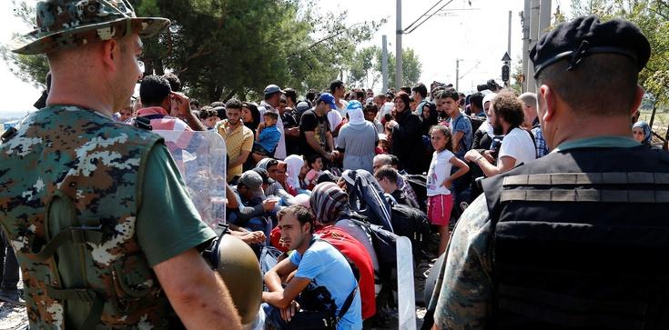 Uchodźcy wracają do domów! Jadą tam na wakacje - zdjęcie