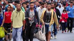 Prezydent Czech chce zamknięcia granic przed uchodźcami - miniaturka