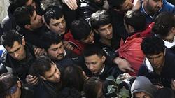 Niemcy: Naiwnością było, że wśród uchodźców nie będzie ISIS - miniaturka