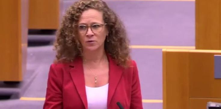 Holenderska europosłanka odsłoniła karty? Przyznała, po co lewicy ,,mechanizm warunkowości''   - zdjęcie
