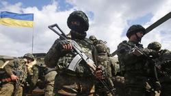 Ukraina intensywnie rozbudowuje armię - miniaturka