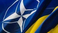 Brzeziński: USA powinny natychmiast pomóc Ukrainie i Gruzji w przystąpieniu do NATO - miniaturka
