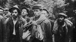 73 rocznica rozpoczęcia Akcji Wisła, która zakończyła zbrodniczą działalność band nazistów ukraińskich - miniaturka