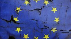 Niemcy chcą zniesienia weta w UE. PO i PiS przeciw, Biedroń za - miniaturka