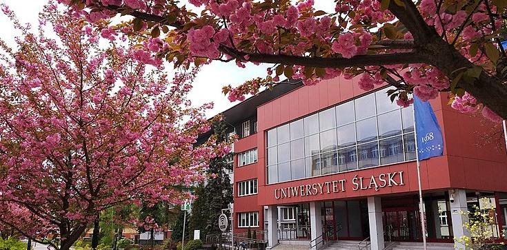 Śląsk: akademik tylko dla zaszczepionych - zdjęcie