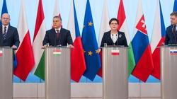 Austria 'przysuwa się' do Grupy Wyszehradzkiej? - miniaturka