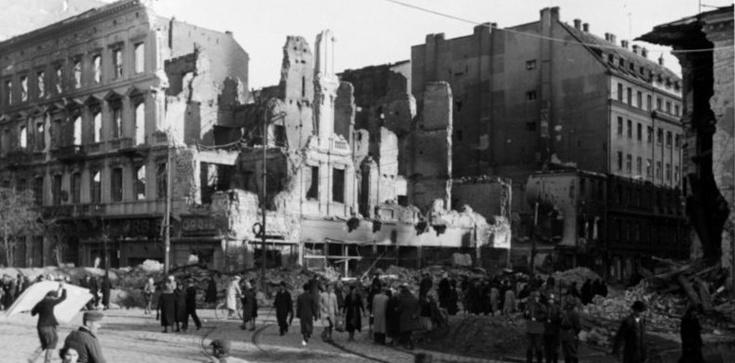 """,,W trakcie II wojny światowej Polaków nikt nie zabijał za to, że są Polakami"""" Komentarze po wpisie - zdjęcie"""