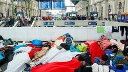 Narasta kryzys imigrancki we Włoszech  - miniaturka