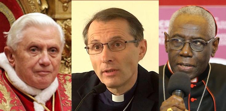 ,,Księża muszą żyć wyłącznie dla Boga''. Francuski biskup popiera kard. Saraha i Benedykta XVI - zdjęcie