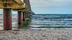 Minister zdrowia: Ścieki zanieczyściły nawet plaże Bałtyku - miniaturka