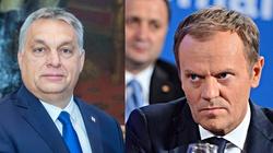 Tusk przegrywa walkę. Fidesz pozostaje w EPP - miniaturka